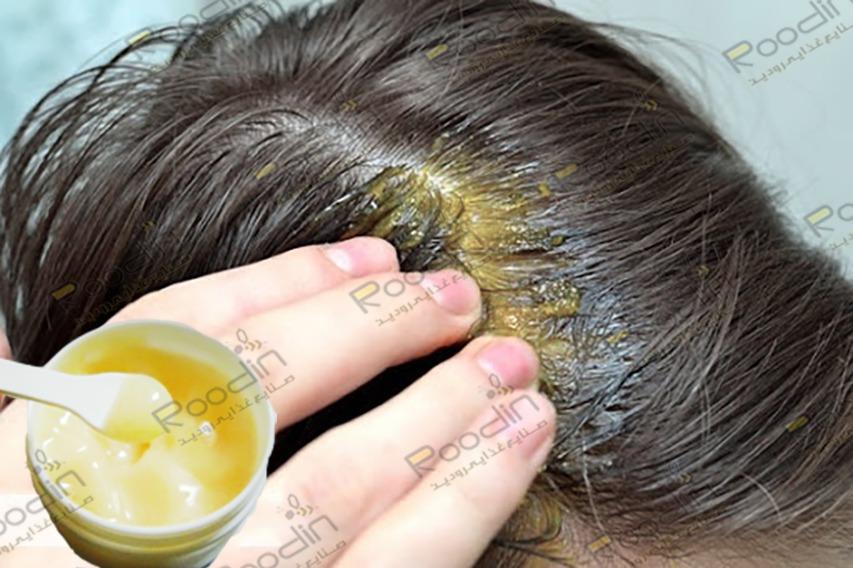 خاصیت ژل رویال برای مو