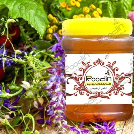 قیمت عسل چهل گیاه رودین